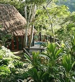 Chaa Creek Treehouse