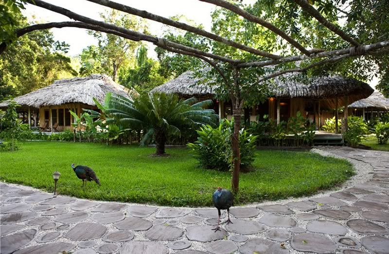 Chan Chich Jungle Lodge