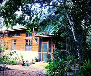 Beyond Paradise Jungle House