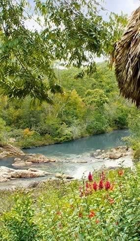 Gaia Riverfront View
