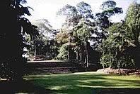 Nimlipunit Mayan Ruin
