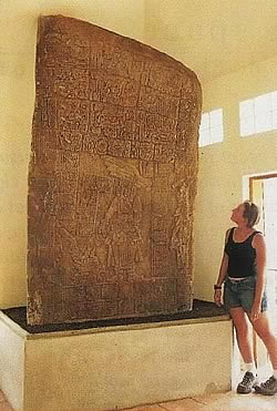 Mayan Stelae