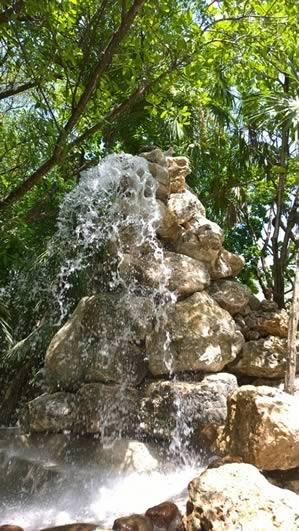 Xanadu Eco-Forest