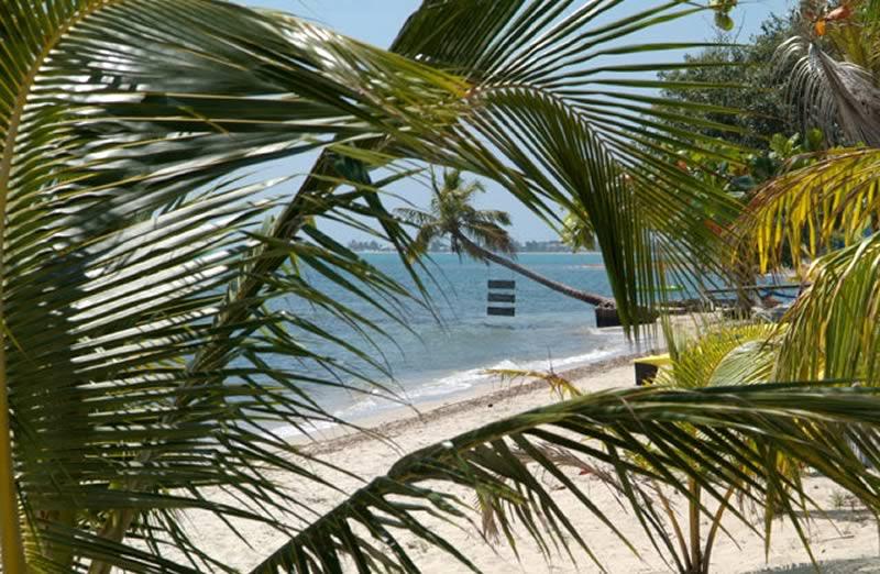 turtle-inn-beachview