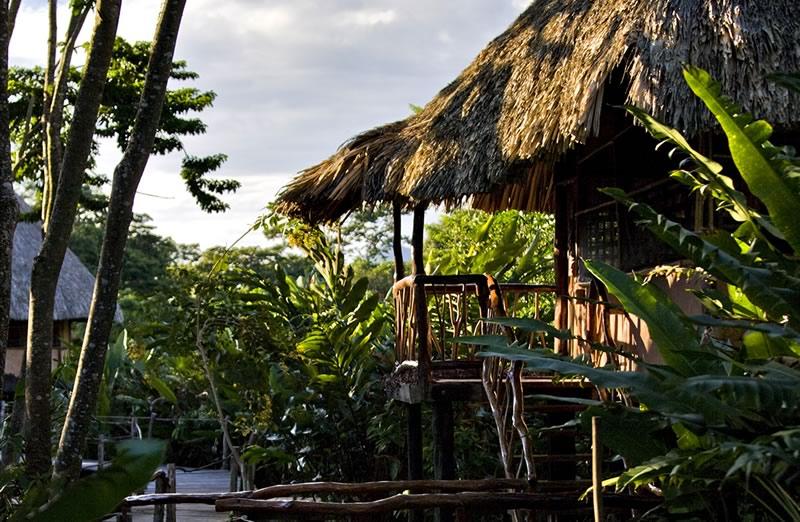 Jungle Cabanas