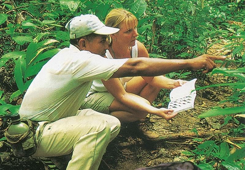 Belize Educational & Volunteer Programs