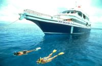 Liveaboard Diving in Belize